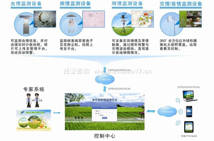 病虫害监测预警系统